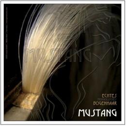 Par alb arcus vioara/viola Mustang Gewa