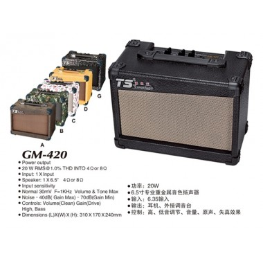 Amplificator GM 420 20 W