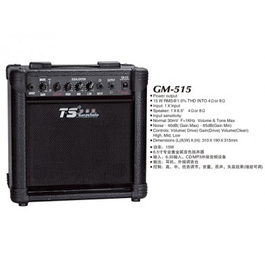 Amplificator GM 515 15 W