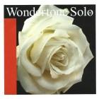 Corzi vioara Pirastro Wondertone Solo