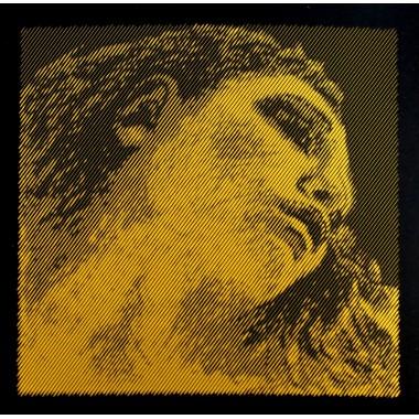 Corzi vioara Evah Pirazzi Gold G silver