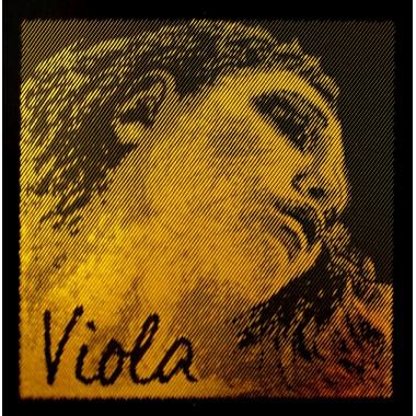 Corzi viola Evah Pirazzi Gold