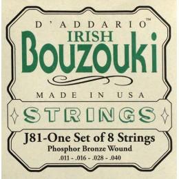 Corzi bouzouki irlandez D'Addario J81