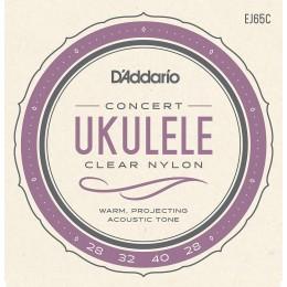 Corzi ukulele concert D'Addario EJ65C